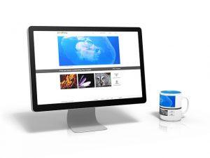 בניית אתרי אינטרנט
